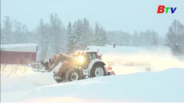 Lở tuyết ở miền Bắc Na Uy, bốn du khách mất tích