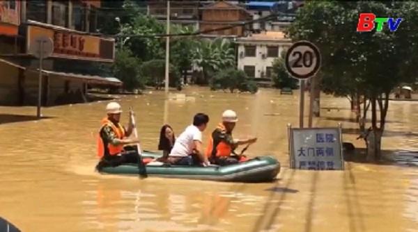 Mưa lũ lớn tại khu tự trị Choang Quảng Tây