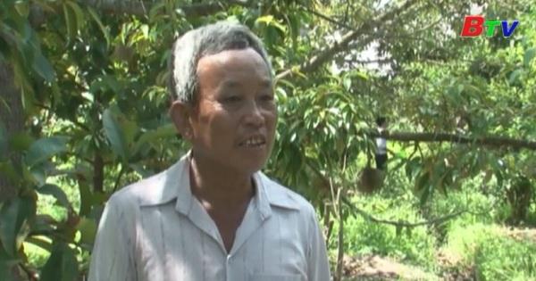 Hiệu quả từ các mô hình kinh tế nông nghiệp ở huyện Dầu Tiếng