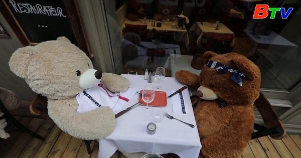 Pháp - Gấu Teddy thế chỗ cho thực khách ở nhà hàng vẫn phải đóng cửa do dịch bệnh