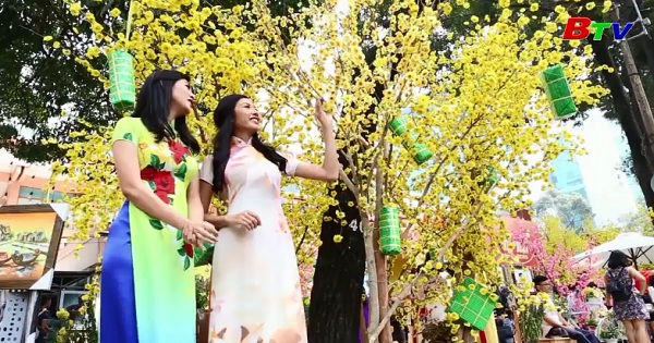 Áo dài Việt - Tinh hoa Việt