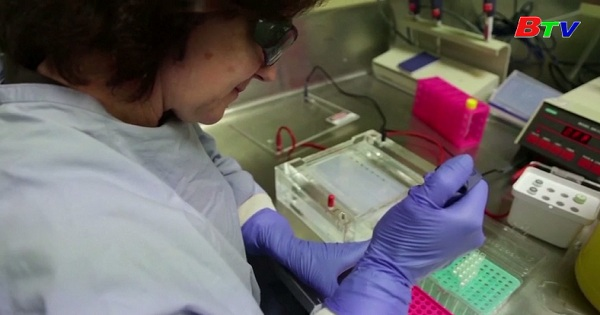 Australia - Thử nghiệm giai đoạn 1 vaccine phòng covid-19