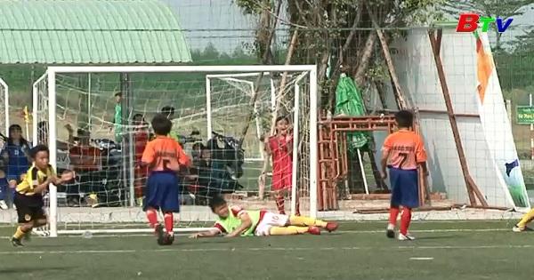 Giải thể thao học sinh tỉnh Bình Dương, môn bóng đá tiểu học vào chung kết