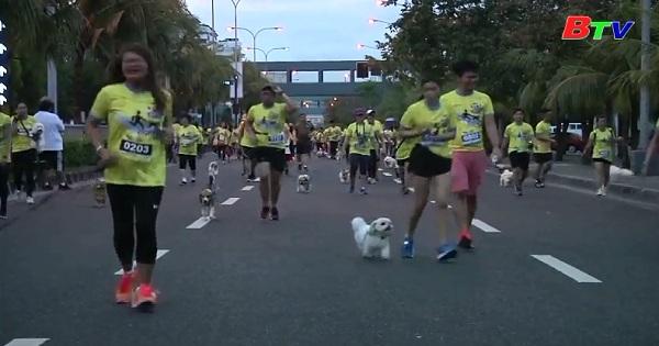 Hàng ngàn chủ nhân và chó tham gia cuộc chạy đua thú vị ở Manila - Philippines