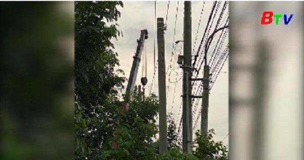 Vi phạm hành lang an toàn lưới điện và tai nạn điện gia tăng
