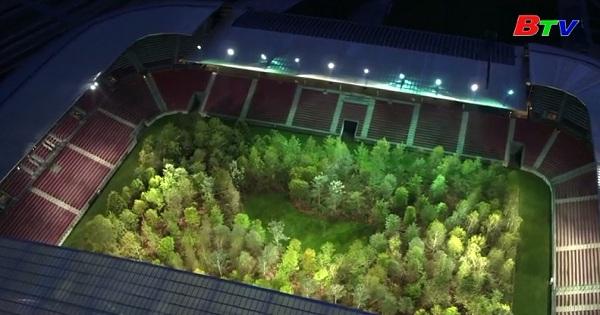 Biến sân bóng đá thành khu rừng với 300 cây xanh ở Áo