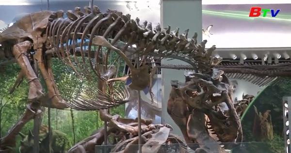 Triển lãm hóa thạch khủng long ở Washington