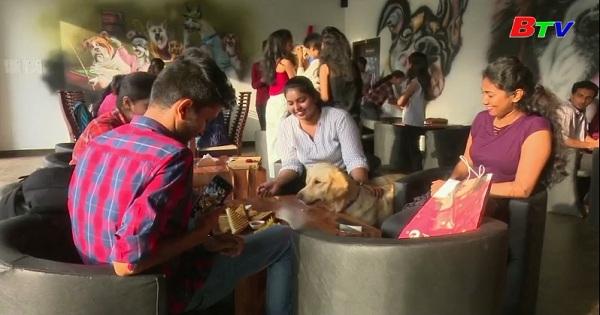 Nhà hàng thú cưng đầu tiên ở miền Nam Ấn Độ