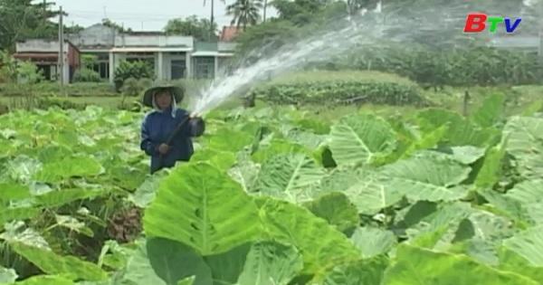 Nhiều đối tượng được miễn thuế đất nông nghiệp