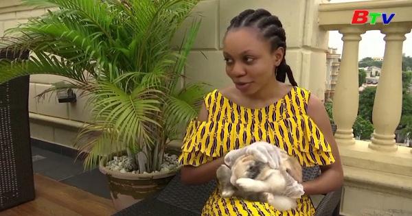 Nigeria - Doanh số bán thú cưng tăng vọt do dịch  covid-19