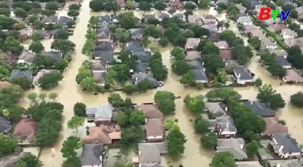 Bão Irma tiếp tục hoành hành gây nhiều thiệt hại