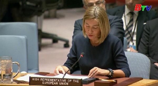 EU kêu gọi Mỹ tiếp tục tài trợ cho các cơ quan LHQ