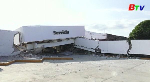 Số người thương vong tại Mexico tăng lên 240 người