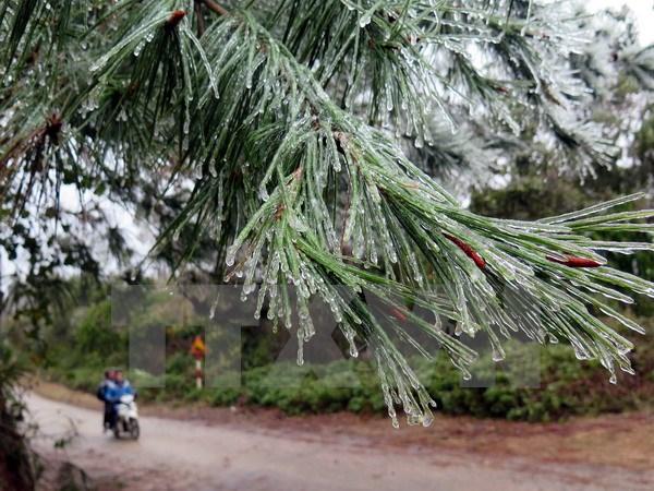 Bắc Bộ và Bắc Trung Bộ tiếp tục mưa rét, vùng núi rét đậm