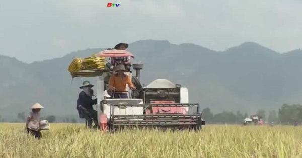 Nông dân được tăng mức vốn cho vay