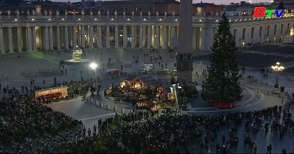 Tòa thánh Vactican thắp sáng cây thông giáng sinh