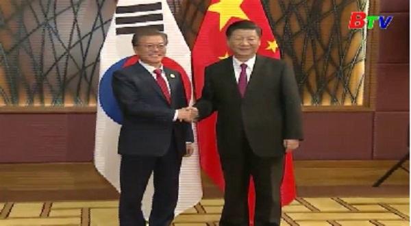 Chủ tịch Trung Quốc gặp lãnh đạo Nhật Bản và Hàn Quốc
