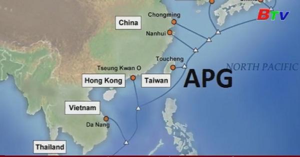 Dự kiến ngày 10/4 khắc phục xong sự cố cáp quang biển APG