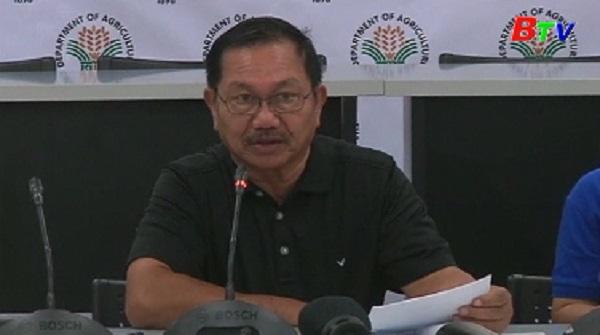 Philippines cảnh báo dịch cúm gia cầm đầu tiên, tiêu hủy 200.000 con
