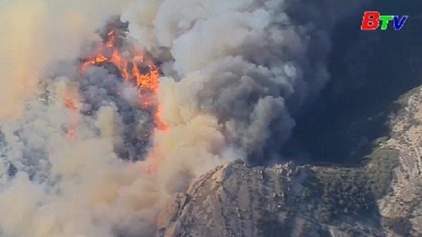 Mỹ - Ít nhất 5 người thiệt mạng do cháy rừng ở California