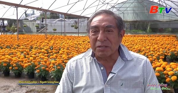 Lễ hội người chết ở Mexico giúp ngành trồng hoa hồi sinh