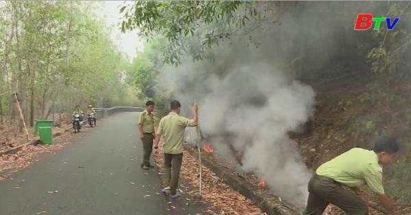 Nâng cao hiệu quả trong bảo vệ,  phòng chống cháy rừng