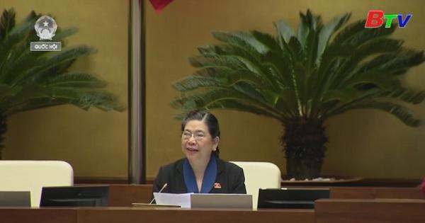 Kỳ họp thứ 16, Quốc hội khóa XIV: Cho ý kiến hai dự án luật