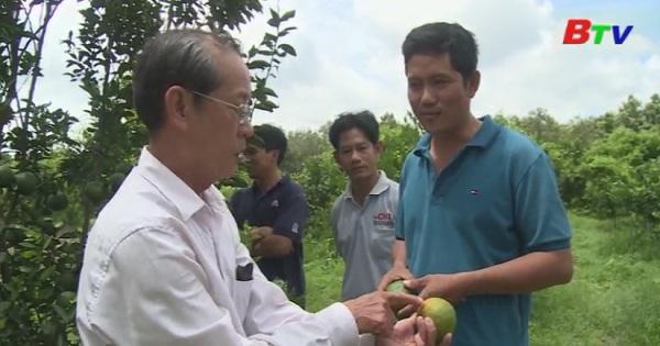 Điển hình thanh niên làm kinh tế giỏi ở huyện Bắc Tân Uyên