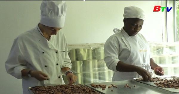 Nhà máy sản xuất sôcôla Organic bằng cách đạp xe