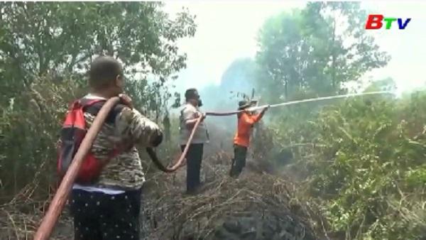 Indonesia nỗ lực dập cháy rừng