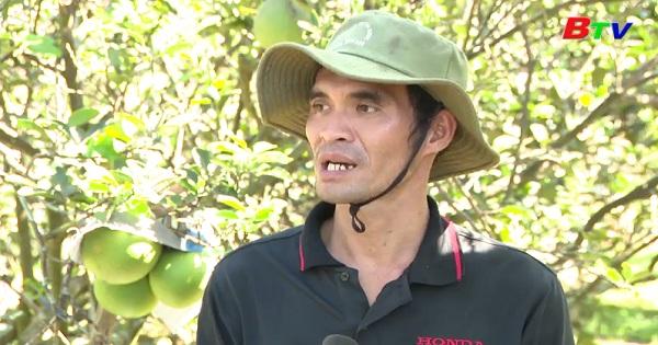 Người nông dân trẻ lao động giỏi