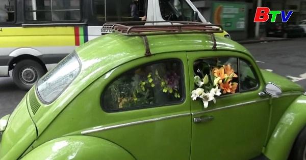 Người phụ nữ Brazil biến xe cổ thành sạp bán hoa di động để kiếm sống