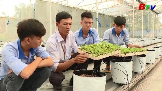 Đào tạo nguồn nhân lực chất lượng cao tại Trường trung cấp Nông Lâm Nghiệp Bình Dương