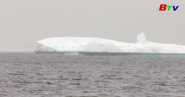 Ngắm băng trôi ở bờ biển Canada