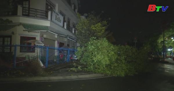 Công tác khắc phục thiệt hại do mưa giông kèm gió lốc, triều cường
