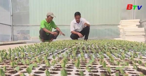 Phát huy vai trò của hội nông dân cơ sở