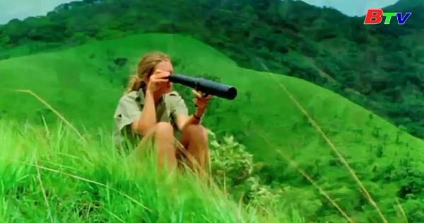 Phim tài liệu về Jane Goodall nhận 7 đề cử Giải Emmy