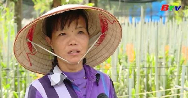 Nữ nông dân sản xuất kinh doanh giỏi