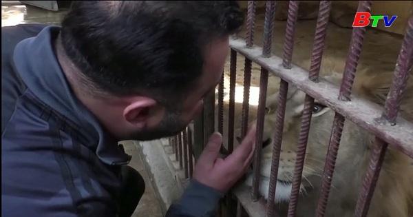 Gặp gỡ người có tình yêu đặc biệt đối với động vật  ở Syria
