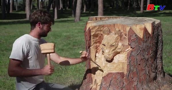 Nhà điêu khắc thổi hồn vào các gốc cây chết ở Rome
