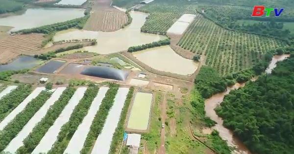Nỗ lực hướng đến nền nông nghiệp hữu cơ bền vững