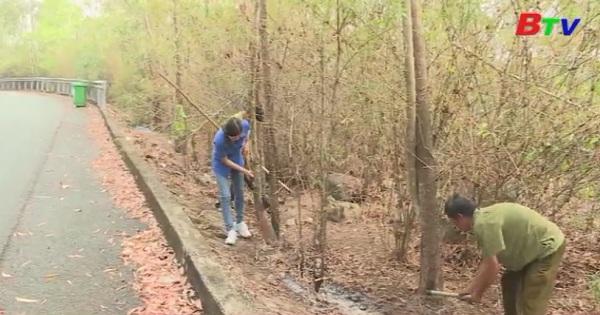 Công tác phòng chống cháy rừng mừa khô