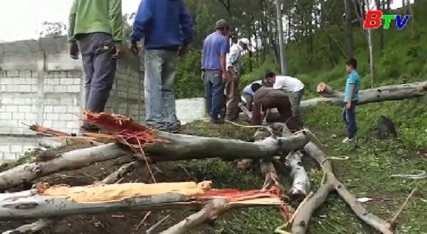 Động đất 6,8 độ richter tại Guatemala