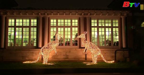 Sở thú ZSL Luân Đôn đã sẵn sàng đón giáng sinh