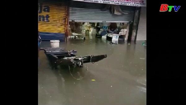 Mưa lũ nghiêm trọng tại Mumbai, Ấn Độ