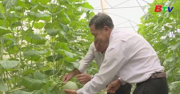 Nông dân đầu tư sản xuất nông nghiệp an toàn