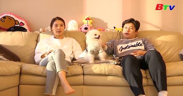 Ngành công nghiệp thú cưng phát triển mạnh ở Hàn Quốc