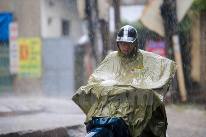 Đông Bắc Bộ có mưa dông, đề phòng gió giật