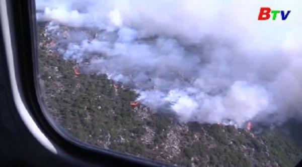 Cháy rừng ở Pháp, lũ lụt nghiêm trọng tại Ấn Độ