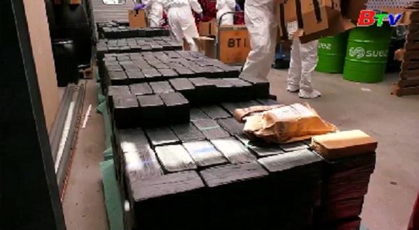 Hà Lan thu giữ lượng lớn ma túy đá